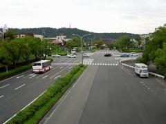 Dscn304101
